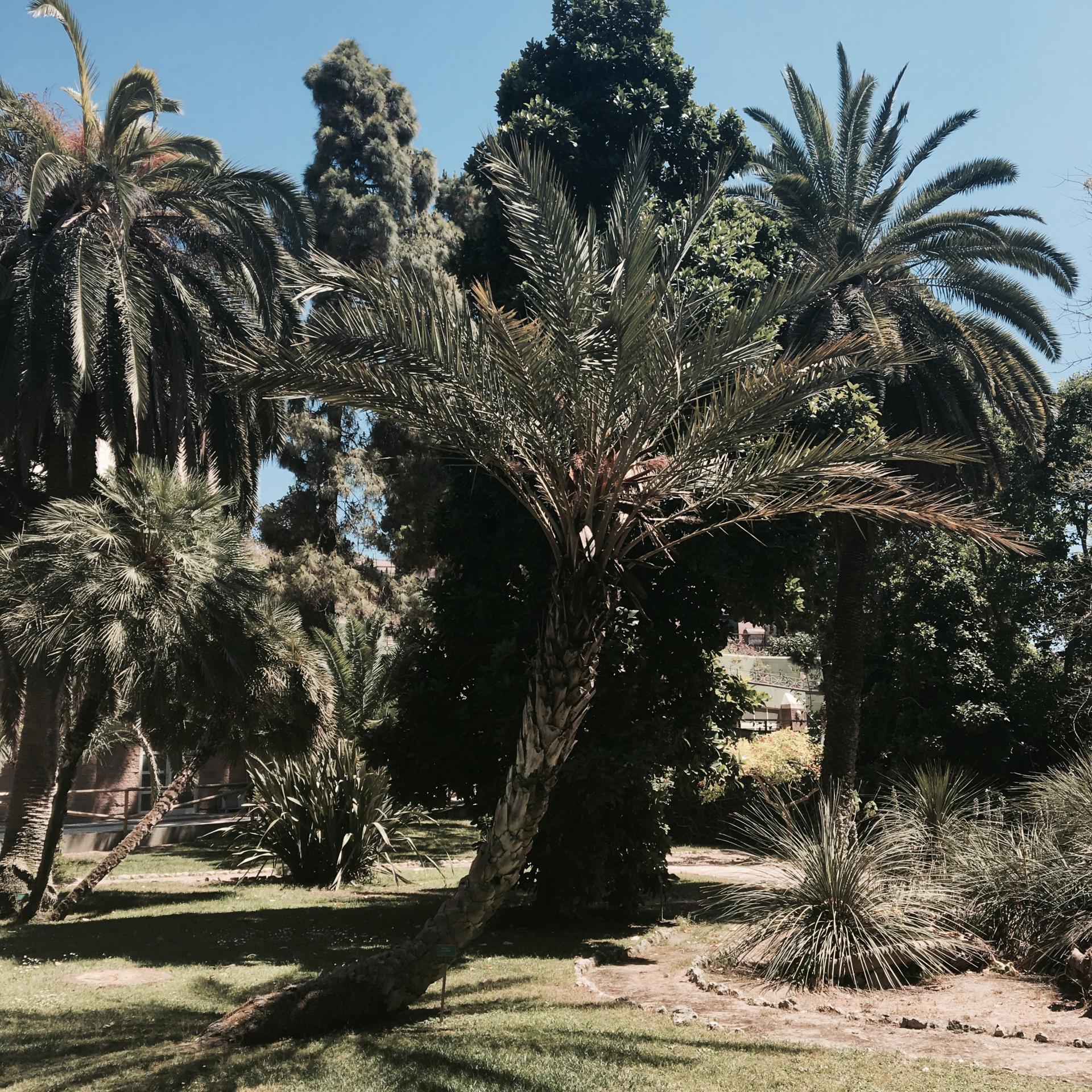 Mon voyage en Sardaigne entre copines 9