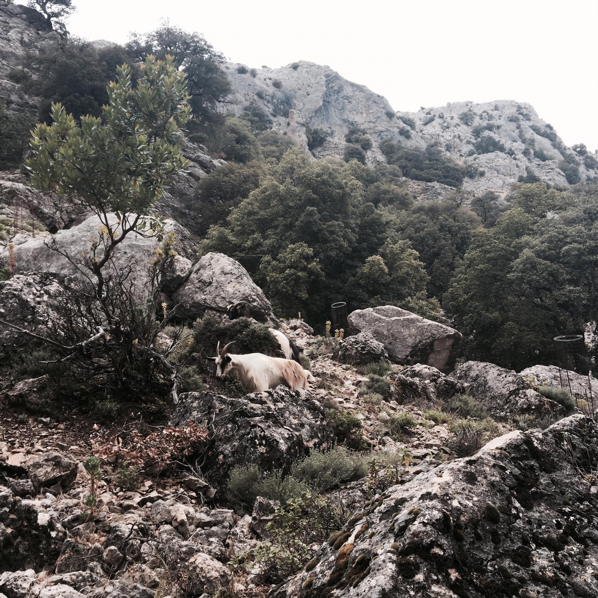 Mon voyage en Sardaigne entre copines 34